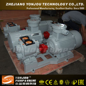 High Pressure Sea Water Pump (S/SH) pictures & photos