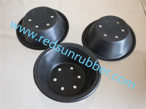 Silicone Rubber Seal pictures & photos