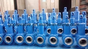 Spring Loaded Pressure Safety Valve, Lever Safety Relief Valve pictures & photos