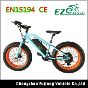2017 Electric Bike 20inch Fat Tire Mini E Bicycle pictures & photos
