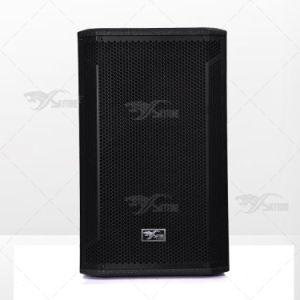 Stx815 Super Ferrite Stage Monitor PA Speaker Box pictures & photos