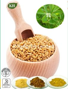 High Quality Fenugreek Seed Extract Furostanol Saponins, Fenugreek Saponins pictures & photos