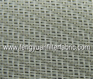 High Quality Single Layer Polyester Forming Mesh pictures & photos