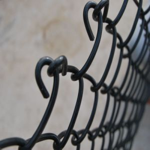 Australia Standard PVC Coated Chain Link Fence pictures & photos