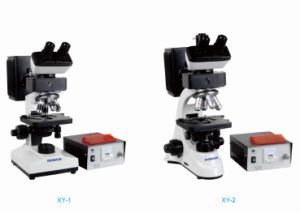 Biobase Fluorescence Biological Microscope Xy-1/Xy-2 pictures & photos