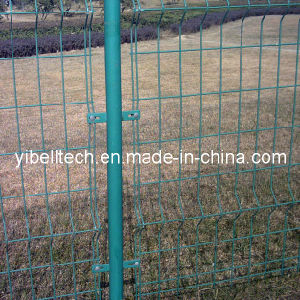 Professional of Wire Mesh Fencing/Welded Wire Mesh Fence pictures & photos