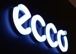 3D Acrylic Channel Letter Sign with LED Lighting pictures & photos