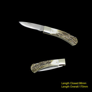 Folding Knife with Deer Horn Handle (#3719) pictures & photos