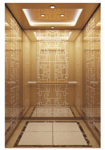 Grand Design Passenger Elevator pictures & photos