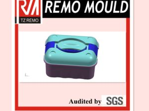 Plastic Tool Box Mould (RM0089764536) pictures & photos