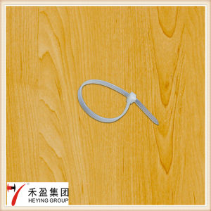 Clamp Ties; Moutable Head Nylon Cable Ties pictures & photos