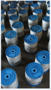 Cheap Price Galvanized Steel Cable 6X7+FC with Plastic Reel Packing pictures & photos