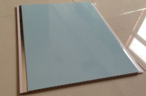 The Latest New Design for PVC Panel