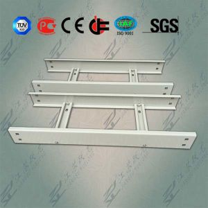 Assembly Ladder Cable Tray for Japan pictures & photos