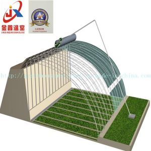 High Competitive and Experienced Solar Greenhouse pictures & photos