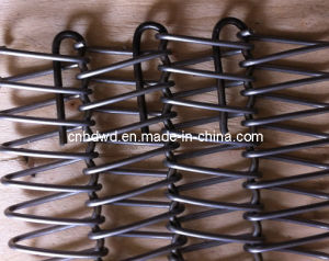 Balanced Wire Mesh (Stainless Steel Conveyor) pictures & photos