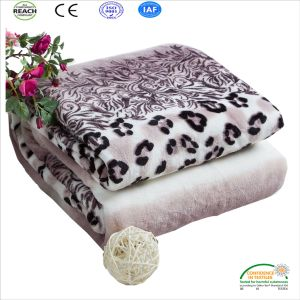 New Arrival Leopard Pattern Coral Fleece Seaonable Blanket pictures & photos