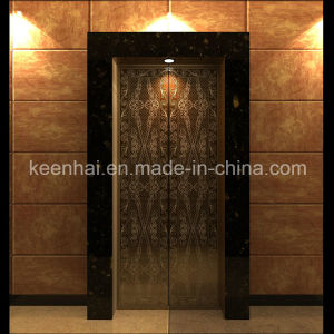 Etched Finish Stainless Steel Elevator Landing Door pictures & photos