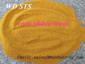 High Quality Corn Gluten Meal for Animal Feed pictures & photos