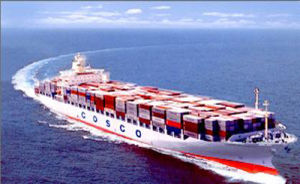 20gp/40gp/Hq Sea Shipping From Shanghai in China to Mundra----Amy