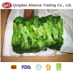 Top Quality IQF Frozen Broccoli pictures & photos