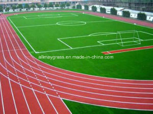 Best Choice Synthetic Rubber Running Track pictures & photos