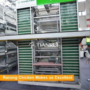 Automatic Chicken Egg Poultry Farm Egg Collecting Machine pictures & photos