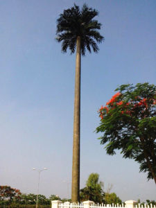 Galvanzied Steel Single Tube Bionic Tree Telecom Tower pictures & photos