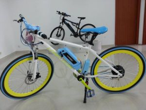 Mountain Electric Bike pictures & photos