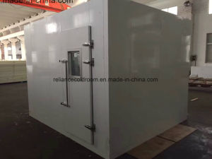 Walkin Building Cold Storage Room with for Meat pictures & photos