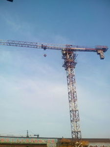 Topless Tower Crane Qtz50 (PT4810)
