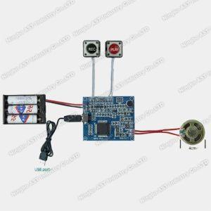 USB Sound Module, USB Recordable Module, Voice Chip pictures & photos