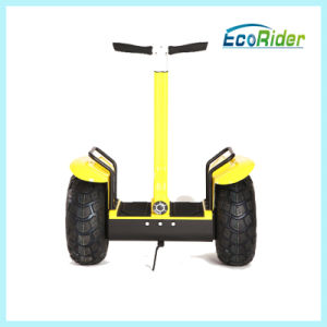 Cheap Electric Scooter for Adults 36V 2000W with Ce Approved pictures & photos