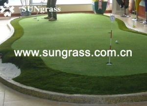 10mm High Density Synthetic Grass From Sungrass (PP010) pictures & photos