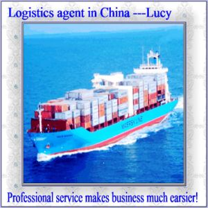 Logistic Agent in China---Lucy