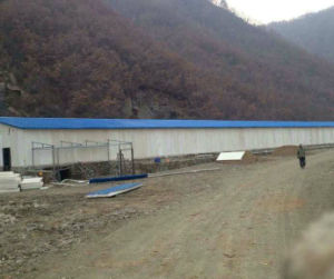 Prefabricated Light Structure Steel Poultry Chicken House/Farm pictures & photos