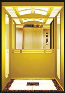 Fjzy-High Quality and Safety Passenger Elevator Fjk-1671 pictures & photos