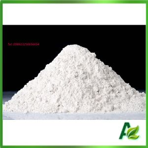 Manufacturer Feed Grade Sodium Butyrate Price pictures & photos