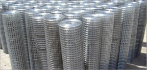 Electric Welded Wire Mesh in Roll