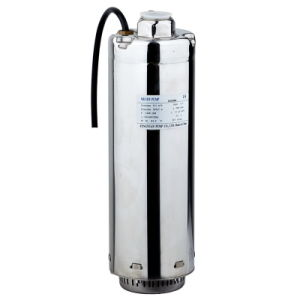 Submersible Pump (five inch stainless steel pump) pictures & photos