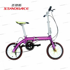 High Quality V-Brake Bicycle with Titanium Frame