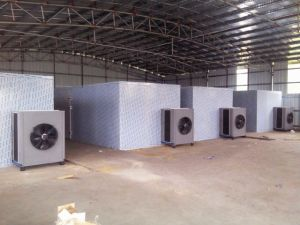 2500 Kg Per Batch Tray Dryer Type Industrial Fruit Drying Machine pictures & photos