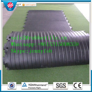 Heavy-Duty Horse Trailer Rubber Stall Mats, Rubber Stable Mats pictures & photos