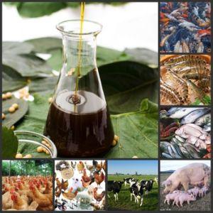 1s Feed Type Soya Lecithin Liquid