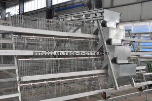 Battery Poultry Equipemt Frame for Farm Use (9LDT-5-1L0-25) pictures & photos