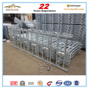 China Cheap High Quality Galvanized Cow Headlock for 5cows pictures & photos