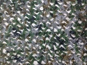 Military and Hunting Desert Camo Net pictures & photos
