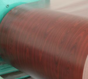 Roller Coating Color Coating Steel Coi pictures & photos