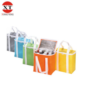 Non Woven Cooler Bag for Food (FLY-CB0023) pictures & photos