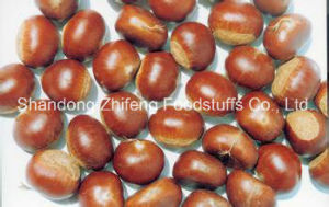 2017 New Crop Chestnut in China pictures & photos